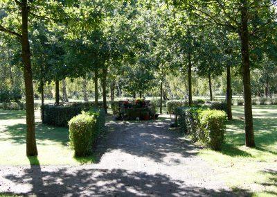 Wellborg-Bestattungen_FRIEDHOF_Bierden_5282
