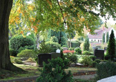 Wellborg-Bestattungen_FRIEDHOF_Rathauspark_5173
